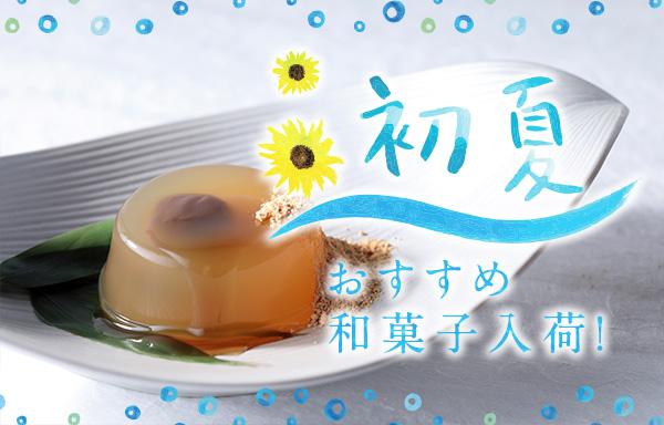 初夏のおすすめ和菓子