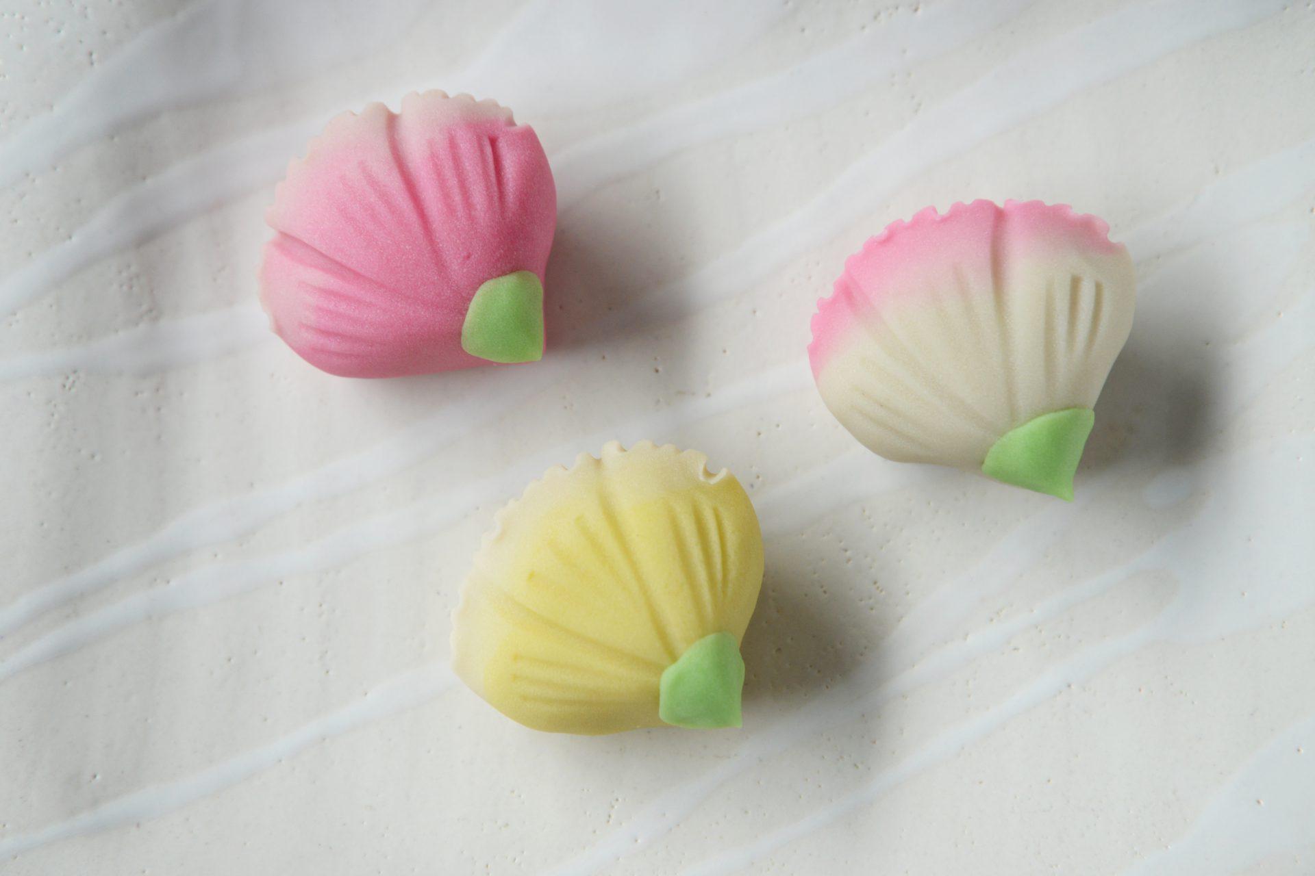 自宅で作る上生菓子キット「母の日 カーネーション」